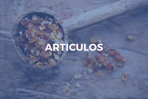 Articulos | William Berstein Company